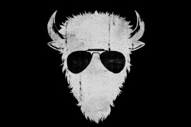 buffallos-bar-meier-logo